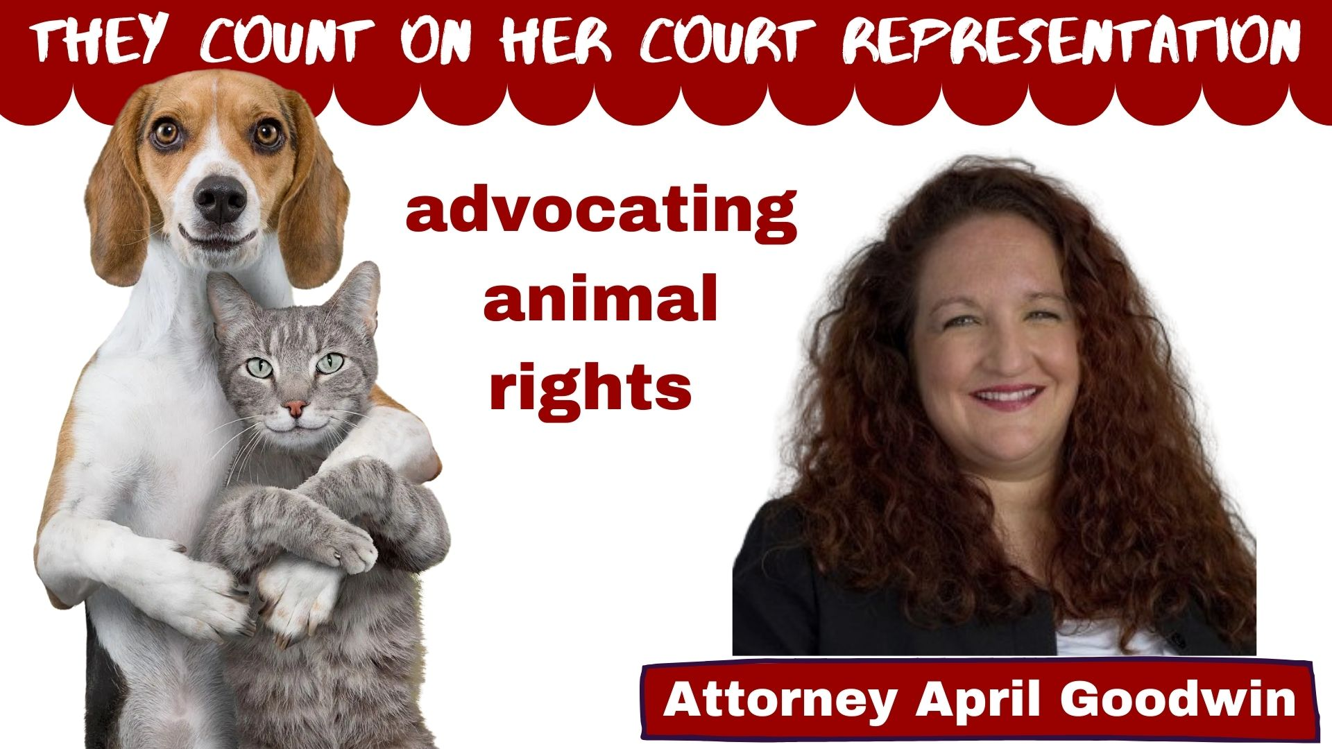 Pet count on April Goodwin court representation
